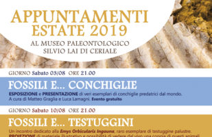 APPUNTAMENTI ESTATE 2019