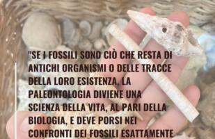 Ma che cos'èun fossile?