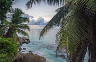 Giornata mondiale dei Tropici