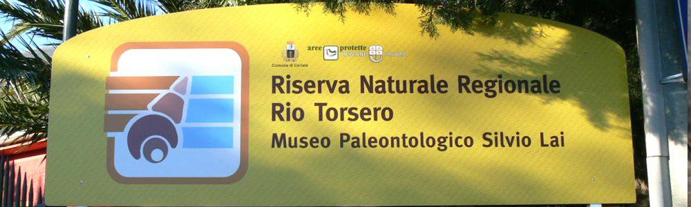 Museo Paleontologico Silvio Lai