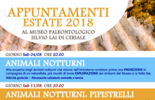 APPUNTAMENTI ESTATE 2018